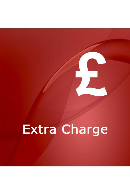 Payment Extra Charge