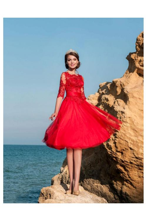 Chic Vintage Half Sleeves A-line Red Tulle Coast Prom Dress