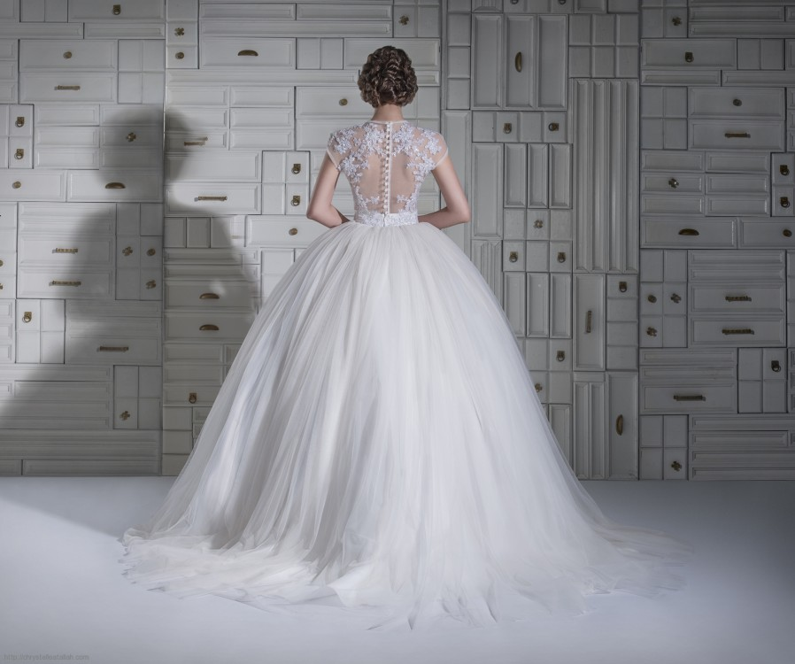 Sleeveless Illusion Neck Lace Bodice Ball Gown Tulle Wedding Dress