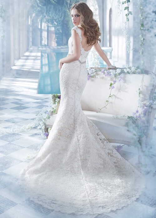 Deep V Neck Lace Pattenrs Mermaid Wedding Dress with Crystal Brooch